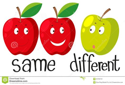 Opposite Adjectives With Same And Different Stock Vector  Image 62786194