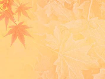 Fall Backgrounds Powerpoint by Fall Autumn 08 Powerpoint Template