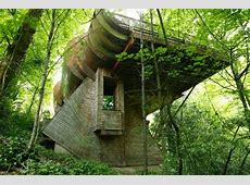 If Frank Lloyd Wright's Falling Water Were a Tree House