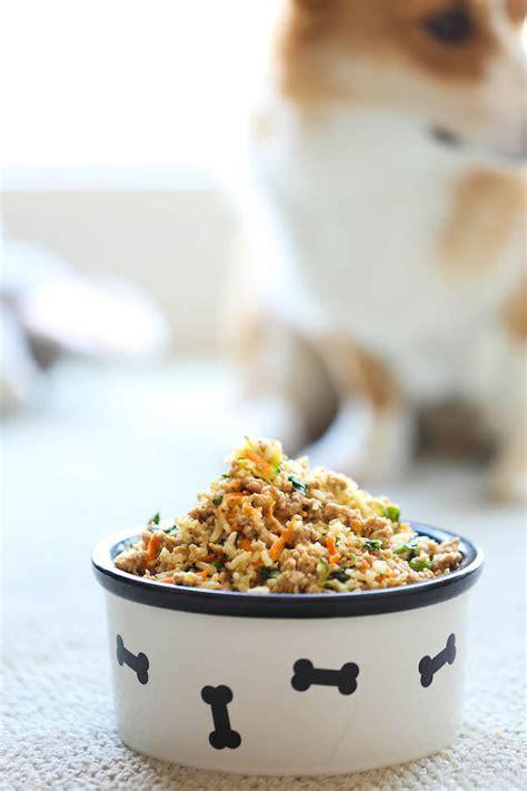 homemade dog food recipes healthy paws