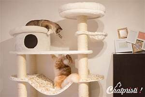 Arbre A Chat Solide : arbre a chat solide et stable ~ Mglfilm.com Idées de Décoration