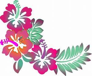 Colorful Floral Corner Borders Png Hibiscus corner clip ...