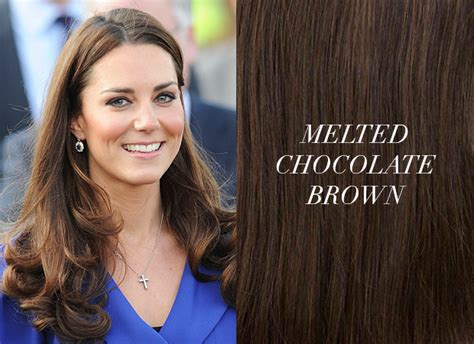 Brown Hair Extensions / Hair Extensions Blog
