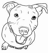 Pitbull Dog Drawing Pit Bull Coloring Clip Clipart Line Pages Face Puppy Bark Easy Undead Wolfie Deviantart Stencil Silhouette Ink sketch template