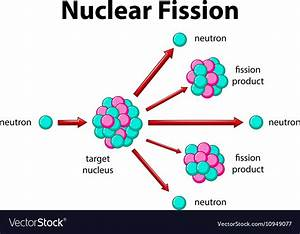 Diagram Showing Nuclear Fission Royalty Free Vector Image