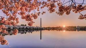 Introducing Washington  Dc