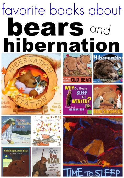 bears and hibernation books for preschool 502 | books about bears for preschoolers