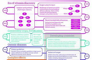 History Of Modern Nutrition Science U2014implications For