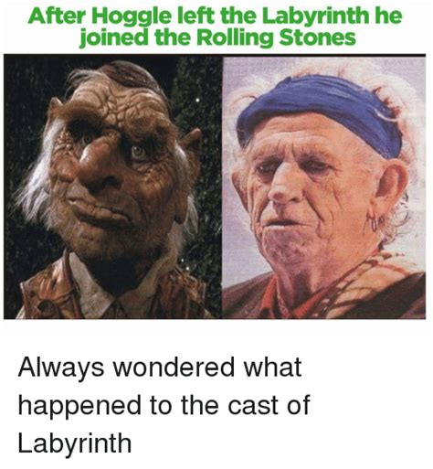 Rolling Stones Meme - after hoggle left the labyrinth he joined the rolling stones always wondered what happened to