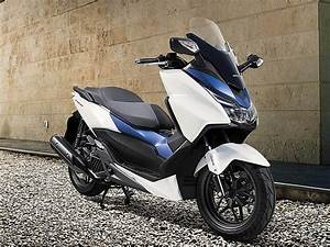 Scooter Forza 125 : honda forza 125 vs pcx 125 parecidos o diferentes motos honda scooter 125 ~ Medecine-chirurgie-esthetiques.com Avis de Voitures