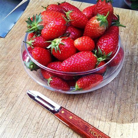 cyril lignac cuisine attitude le printemps arrive avec les fraises le de cyril