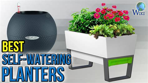 watering planters  youtube