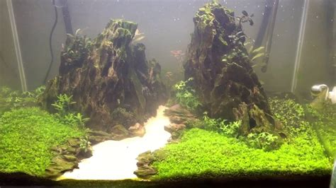 mountain aquascape ada 75p ohko mountain