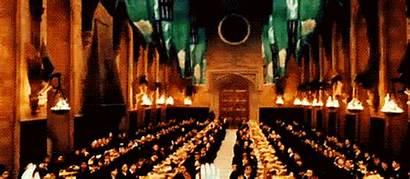 Slytherin Hogwarts Potter Harry Casas Das Order
