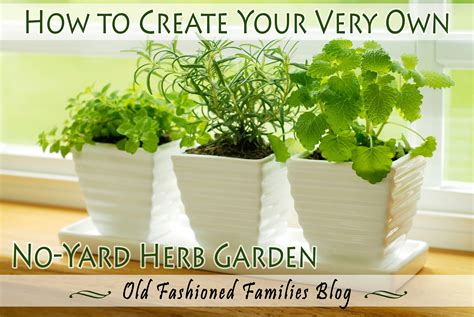 create your own no yard herb garden fashioned
