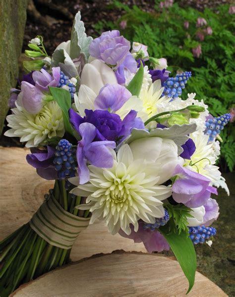 25 Best Ideas About Purple Dahlia On Pinterest Dahlia