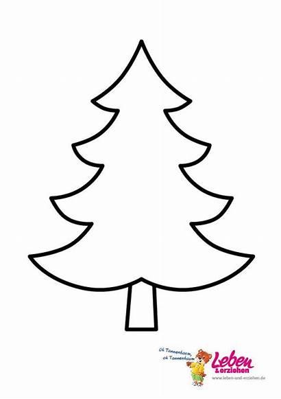 Tannenbaum Vorlage Ausmalbilder Weihnachtsbaum Malvorlagen Christmas Kostenlos