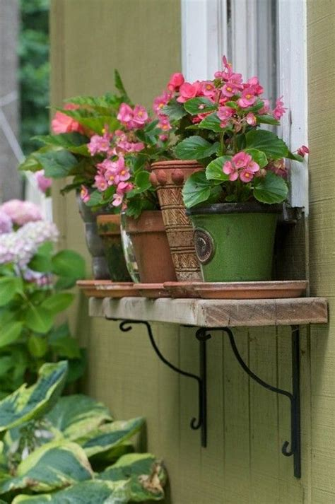 Window Ledge Plant Pots by 1066 Best Images About Container Gardens On
