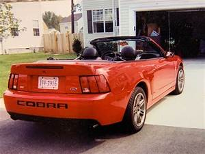 4th gen 2003 Ford Mustang 10th year anniversary SVT Terminator convertible For Sale ...