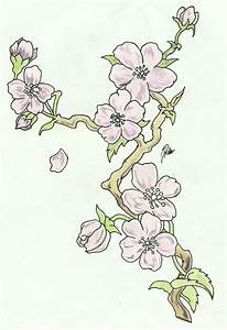 Cherry Blossoms: Branch Sketch (Colored) by FaytOfAllStars ...