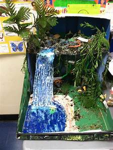 """Biorama"" biome diorama of the tropical forest made by one ..."