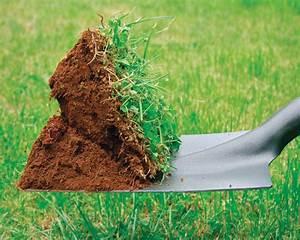 Comment Enlever Les Mauvaises Herbes : lutter contre les mauvaises herbes de son gazon ~ Melissatoandfro.com Idées de Décoration