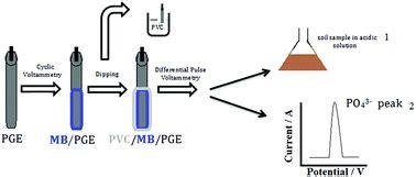 preparation    electrochemical sensor  phosphate detection based   molybdenum blue