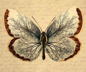 Vintage Butterfly Unique image of tree in the wings by ...