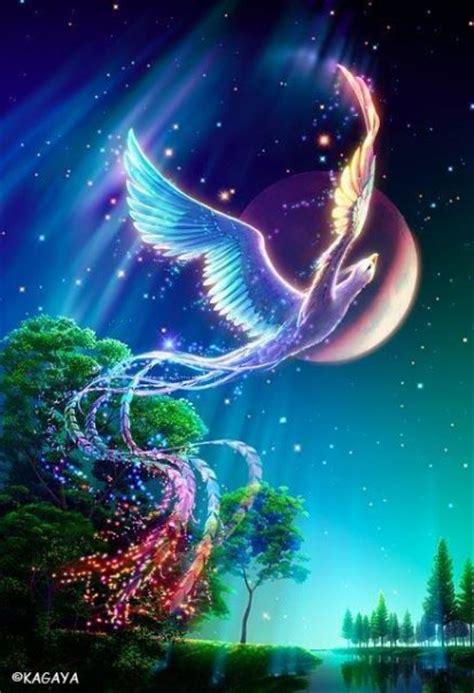 fantasy creatures anjs angels photo  fanpop