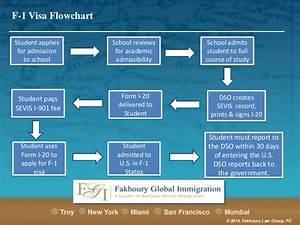 F 1 visa flow chart