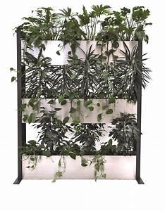 Pflanzen Als Raumteiler : pflanzen als raumteiler simple with pflanzen als raumteiler cool raumteiler ideen nett on und ~ Sanjose-hotels-ca.com Haus und Dekorationen