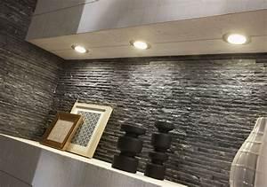 Parement Salle De Bain : ordinaire plaquette de parement salle de bain 1 ~ Dailycaller-alerts.com Idées de Décoration