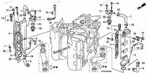 Honda Bf200 - Repair Or Replace  - Page 2 - The Hull Truth