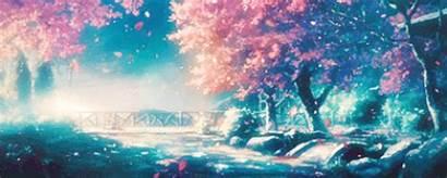 Anime Fantasy Sakura Scenery Tree Japan Kawaii