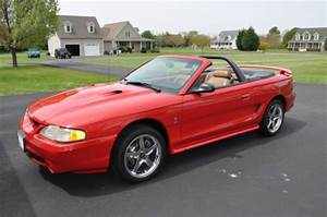 Find Used 1997 Ford Mustang Svt Cobra Convertible 2
