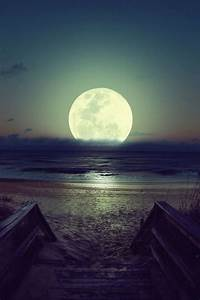 Beautiful Beach at Night Moon