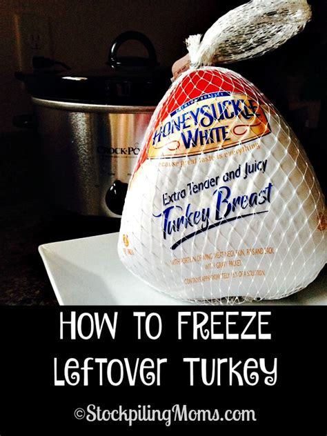 how can you freeze a turkey recipes for left over turkey