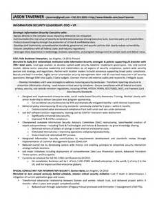 software sales executive resume software sales resume exles thedruge390 web fc2