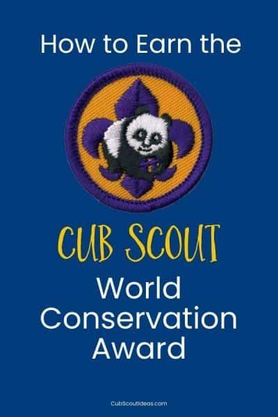 cub scout awards  cub scouts page    cub scout