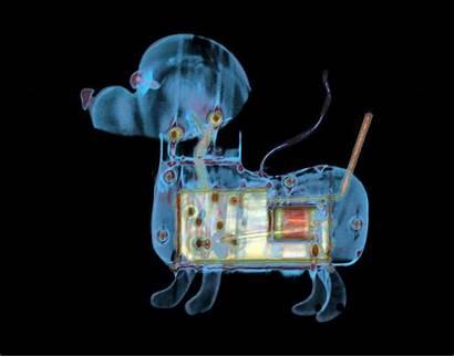 Radiology Wallpapers Wallpapersafari Inside Ray Xray Backgrounds