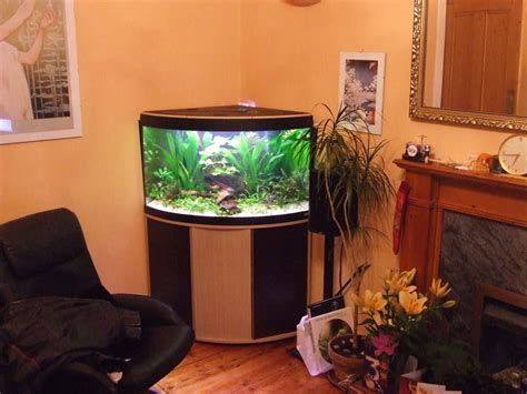 Living Room Fish Tank Table Aquarium In Feng Shui Where To Furniture For Living Room Modern Interior Design Ideas Rooms Template Staging A Country Daybed Nimbus Gray Open Plan Decorating