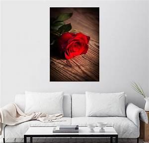 Rose Aus Holz : posterlounge wandbild rote rose auf holz kaufen otto ~ Eleganceandgraceweddings.com Haus und Dekorationen