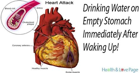 Drinking Water On An Empty Stomach Immediately After Waking Up