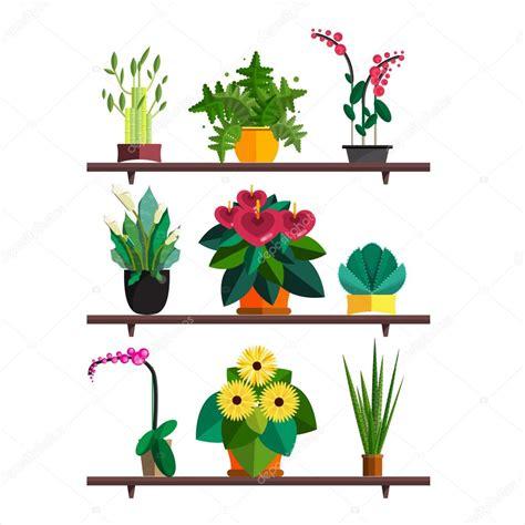 plantes de bureau illustration des plantes d 39 intérieur d 39 intérieur et
