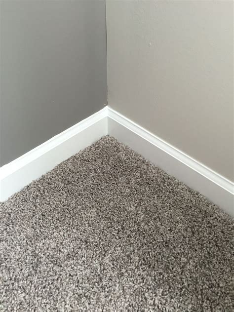 our gray carpet and the gray sw dovetail accent