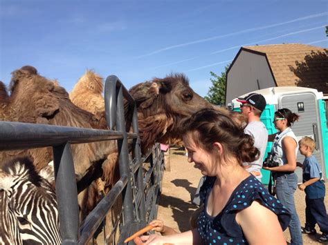 nevada animal nv animals zoo places moapa known attractions onlyinyourstate roos mike