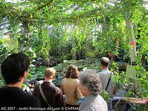 Jardin Botanique De Lyon : jardin botanique de lyon the world s best photos by ~ Farleysfitness.com Idées de Décoration