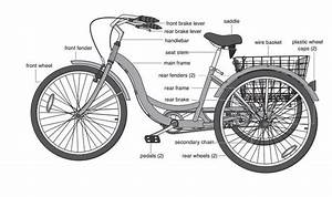 31 Best Images About I Want A Tricycle  On Pinterest