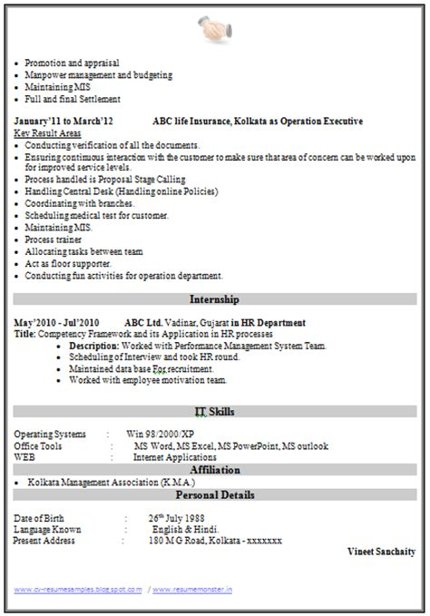 curriculum vitae of mis executive 10000 cv and resume sles with free resume template