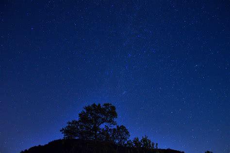 Stars Above The Trees Devil Lake State Park